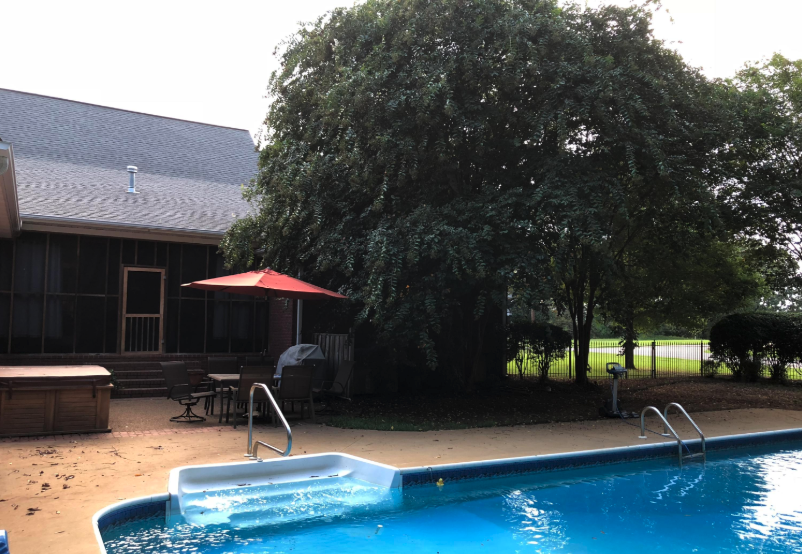 pool and pool deck at 659 owen road new albany